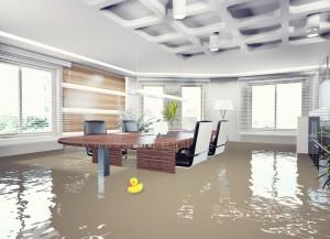 Flood Risk?
